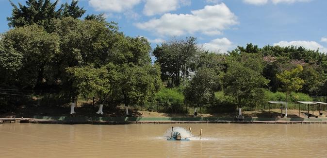 Pesqueiro Recanto dos Peixes (Piracicaba) - Fotos do Local