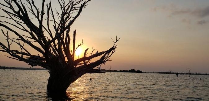 Operação Marreco Pescador - Fotos do Local