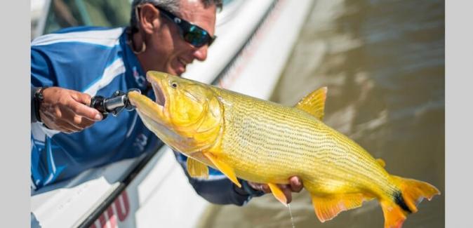 Pedrinho Pesca Turismo - Peixes do Local