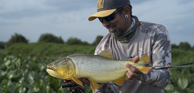 Porto da Fazenda Ecolife - Peixes do Local