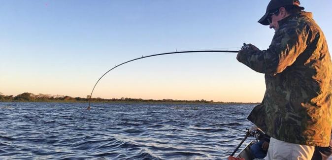 Agência Pesko - Peixes do Local