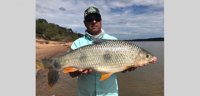 Salto Chico Pesca - Peixes do Local