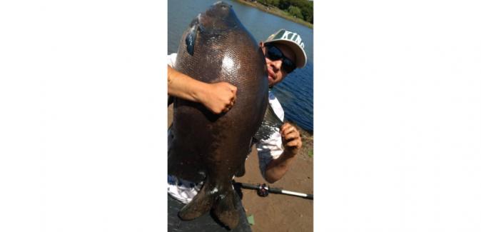 Centro de pesca dos Irmãos - Peixes do Local