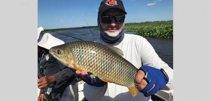 Matute Pesca - Peixes do Local