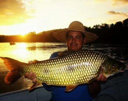 Pousada e Restaurante Biguá - Peixes do Local