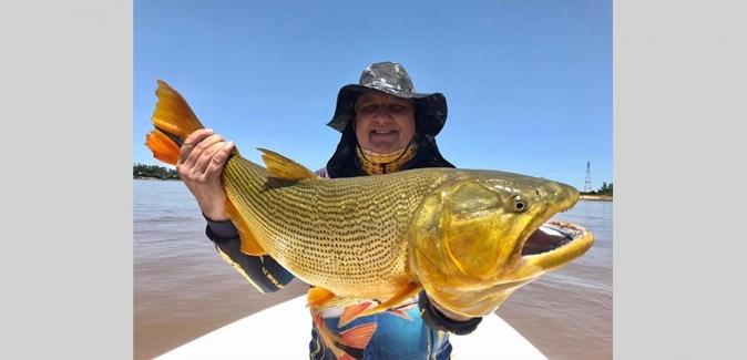 Dourado Bus - Peixes do Local