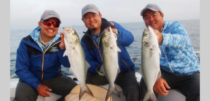 Saltwater Team - Peixes do Local