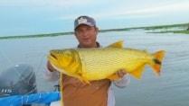 Pasión por la Pesca - O fantástico dourado de Esquina