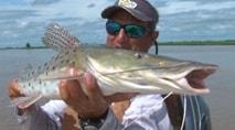 Pasión por la Pesca - As surpresas de uma pescaria de surubim