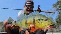 Momento da Pesca - Pescaria difícil de tucunaré-açu no seco rio Itapará