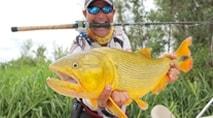 Momento da Pesca - Dourado na rodada com isca natural no Pantanal argentino