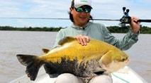 Biopesca - Redondos amazônicos com isca natural no rio Teles Pires