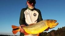Ases da Pesca - Pesca de dourado com isca artificial e no fly fishing