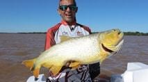 Pasión por la Pesca - Dourado e jaú com isca natural em Ituzaingó