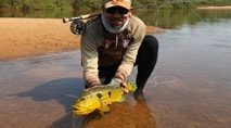 Na Pegada do Fly - Fly Fishing selvagem nas praias do rio Tapajós