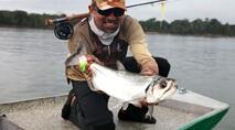 Na Pegada do Fly - Cachorras no Fly nas águas do rio Tapajós