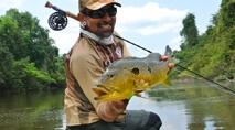 Na Pegada do Fly - Diversidade nas pegadas do rio Tapajós
