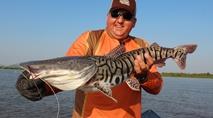 - Pescaria de peixes de couro no Pantanal