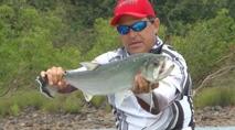 Momento da Pesca - Pescaria de cachorras e bicudas na seca do rio Tapajós