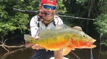 Momento da Pesca - Pescaria de tucunarés gigantes no rio Cururu