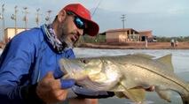 Momento da Pesca - Grande robalos flecha no jig head
