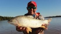 Pasión por la Pesca - Pescaria de pacu e boga