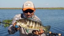 Na Pegada do Fly - Uma aventura no Pantanal sul